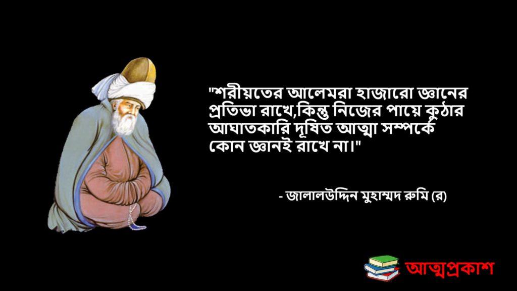 সৃষ্টিকর্তা-অতীন্দিয়বাদ-সুফিবাদ-নিয়ে-রুমির-উক্তি-বানী-jalaluddin-mohammad-rumi-quotes-bangla-attoproksh৯