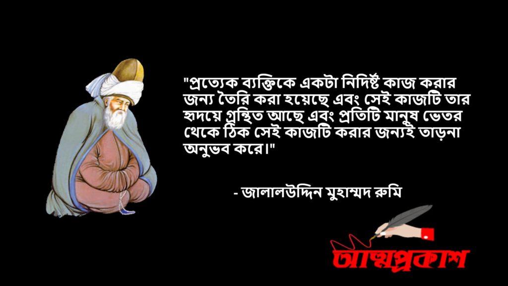 আধ্যাতিকতা-সমাজ-জীবন-দর্শন-নিয়ে-মাওলানা-জালালউদ্দিন-মুহাম্মদ-রুমির-উক্তি-বানী-jalaluddin-rumi-quotes-bangla (2)