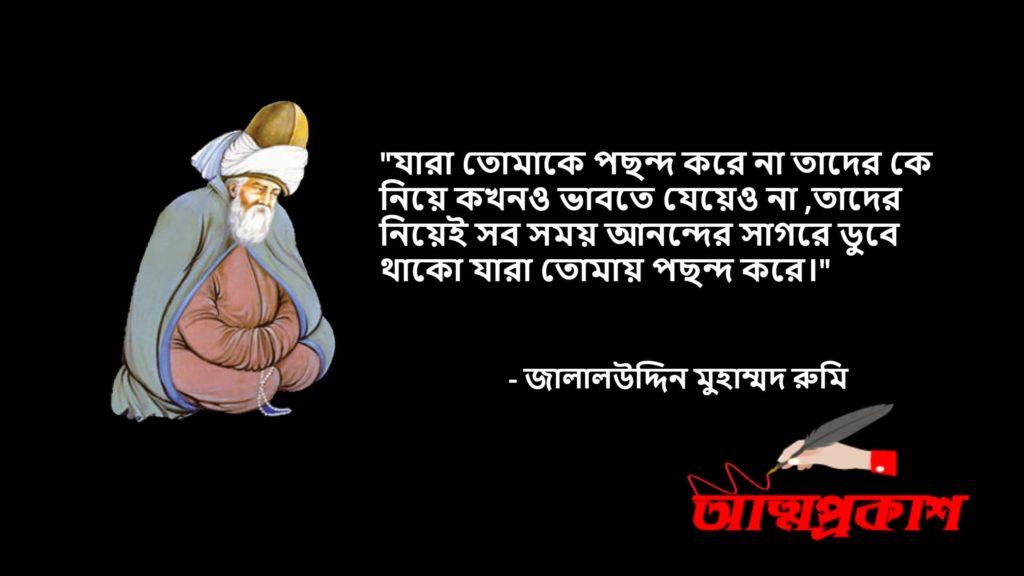 আধ্যাত্মিকতা-সমাজ--দর্শন-নিয়ে-মাওলানা-জালালউদ্দিন-মুহাম্মদ-রুমির-উক্তি-বানী-jalaluddin-rumi-quotes-bangla10