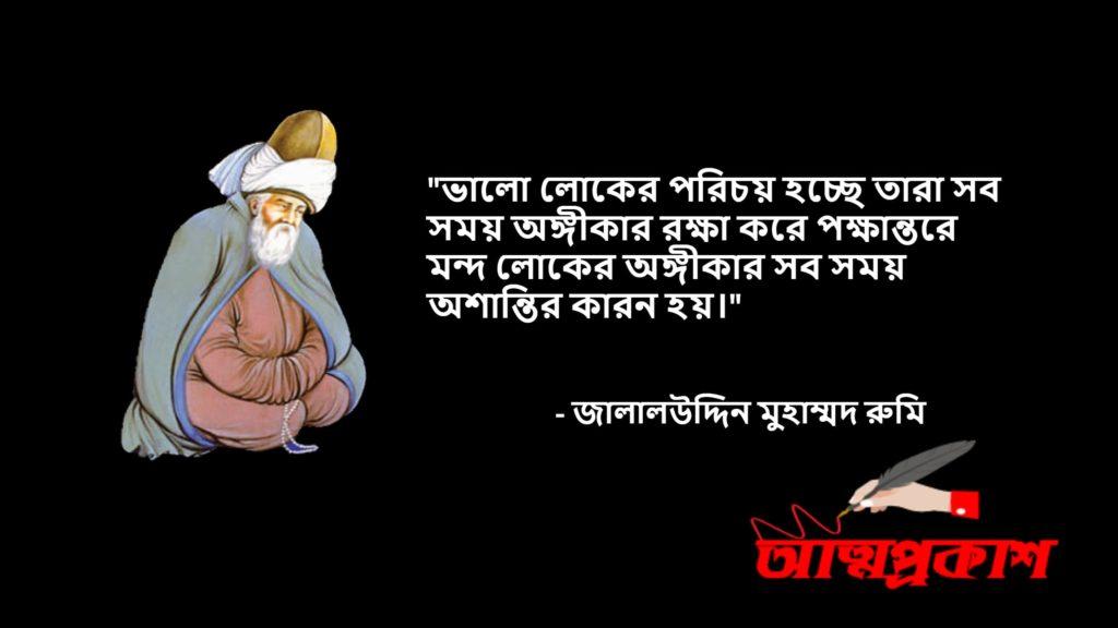 আধ্যাতিকতা-সমাজ-জীবন-দর্শন-নিয়ে-মাওলানা-জালালউদ্দিন-মুহাম্মদ-রুমির-উক্তি-বানী-jalaluddin-rumi-quotes-bangla11