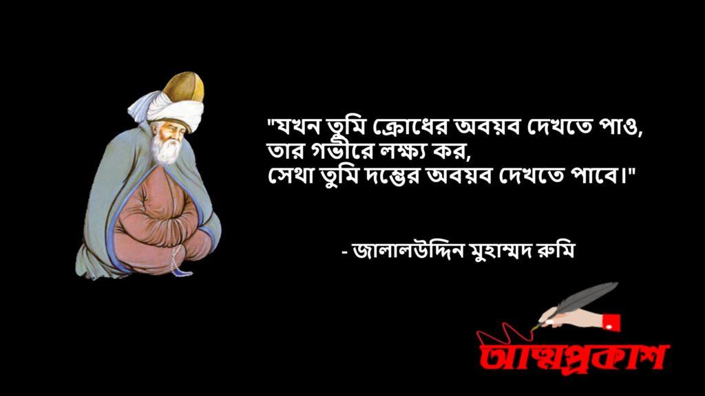 আধ্যাত্মিকতা-সমাজ-জীবন-দর্শন-নিয়ে-মাওলানা-জালালউদ্দিন-মুহাম্মদ-রুমির-উক্তি-বানী-jalaluddin-rumi-quotes-bangla7-attoprokash
