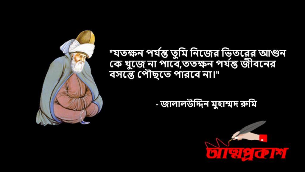 আধ্যাত্মিকতা-সমাজ-জীবন-দর্শন-নিয়ে-মাওলানা-জালালউদ্দিন-মুহাম্মদ-রুমির-উক্তি-বানী-jalaluddin-rumi-quotes-bangla9
