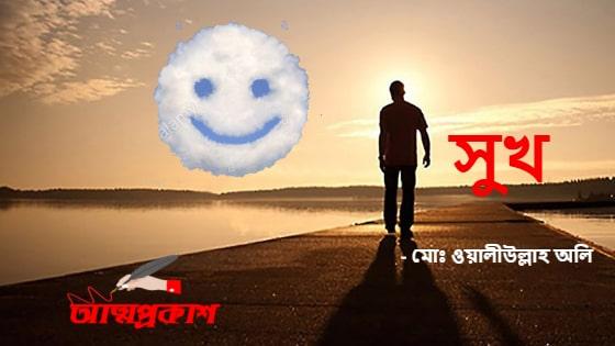 সুখ – মোঃ ওয়ালীউল্লাহ অলি । আত্মপ্রকাশ নির্বাচিত গল্প