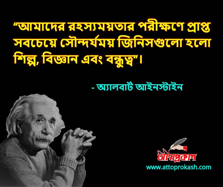 বন্ধু-নিয়ে-অ্যালবার্ট-আইনস্টাইন-উক্তি-বাণী-albert-einstein-friends-quotes-bangla-bani