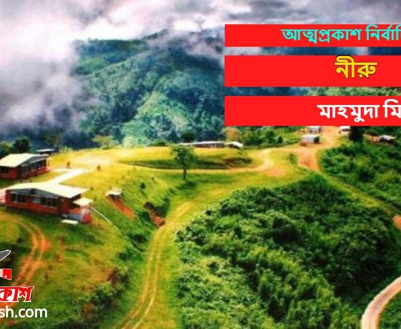 নীরু >> মাহমুদা মিনি । ভৌতিক । আত্মপ্রকাশ নির্বাচিত গল্প