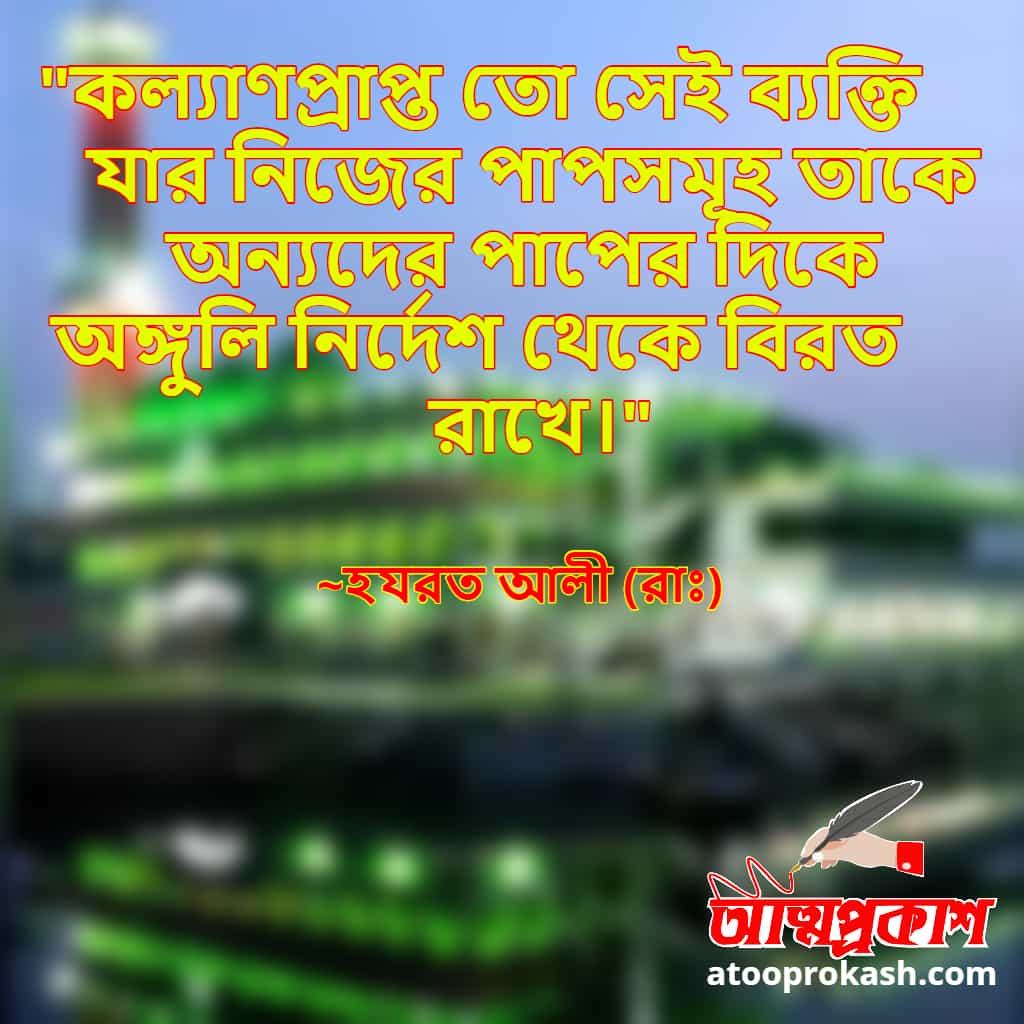 পাপ-নিয়ে-হযরত-আলী-(রাঃ)-এর-বাণী-hazrat-ali-quotes-on-sin-in-bangla-bangla-bani